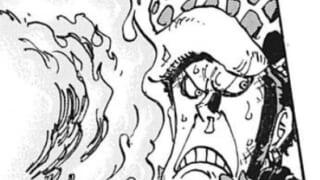 【ワンピース】トラファルガー・ローさん、イケメンが台無しになる