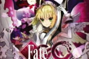 【Fate】EXTRACCCの思い出